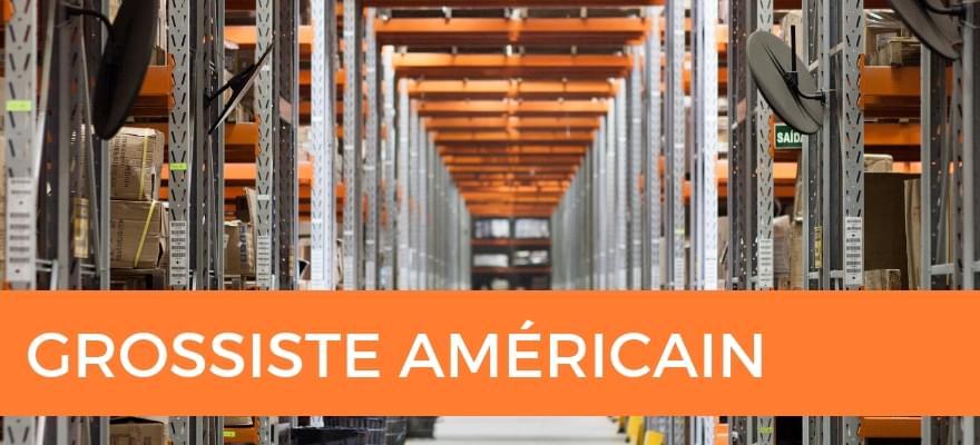 Fournisseurs dropshipping et grossistes Américains pour vos produits en dropshipping