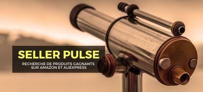 Seller Pulse : Avis sur l'outil pour trouver des produits avec Amazon et AliExpress